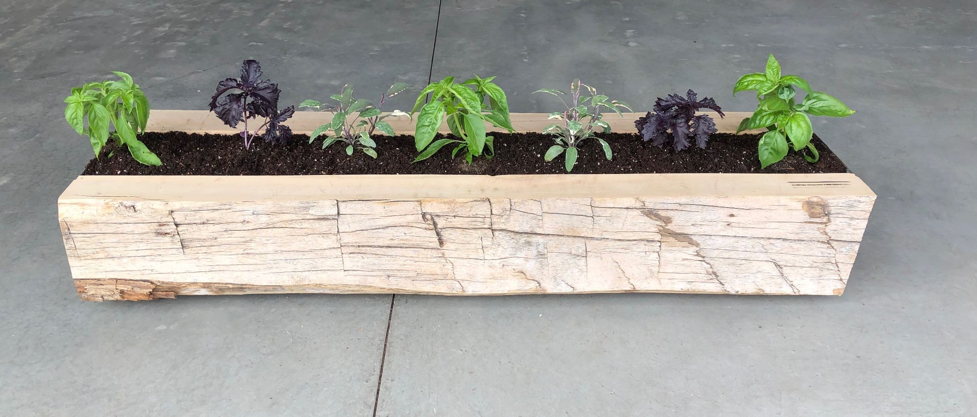 Reclaimed Wood Garden and Plants